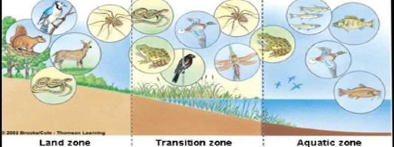 Vaya (Burgaz) ve Gala (Enez) göllerinde bir ortak modelin geliştirilmesi ve ekosistem servislerine yönelik metodolojinin değerlendirilmesi
