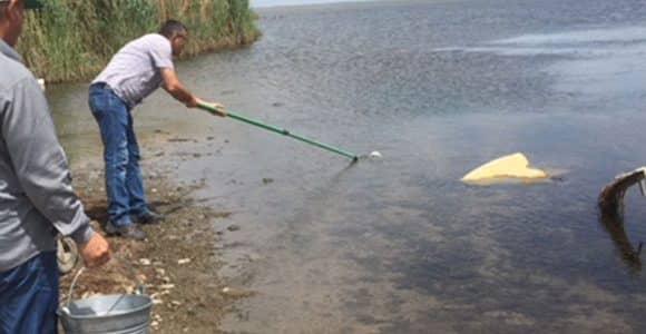 Провеждане на изследване на екологичните условия и състояние на водите на езерата Вая (Бургас) и Гала (Енез)