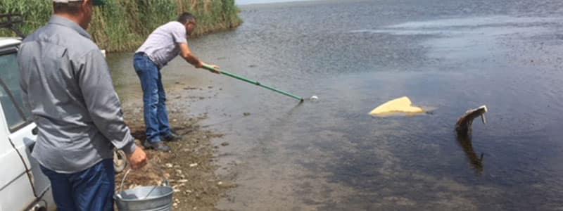 Vaya (Burgaz) ve Gala (Enez) göllerinin sularının ekolojik durumuna dair bir çalışma yapılması